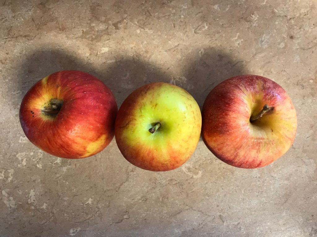Three Old Apples A Camping Culinary Challenge Smart Rv